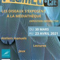 expo plumes et compagnie